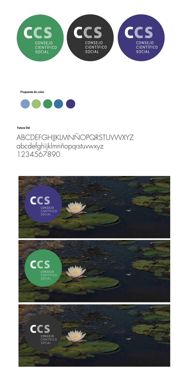 CCS-1