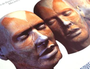 afiche-anatomia