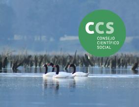 portada_web_CCS_sin_nuevo