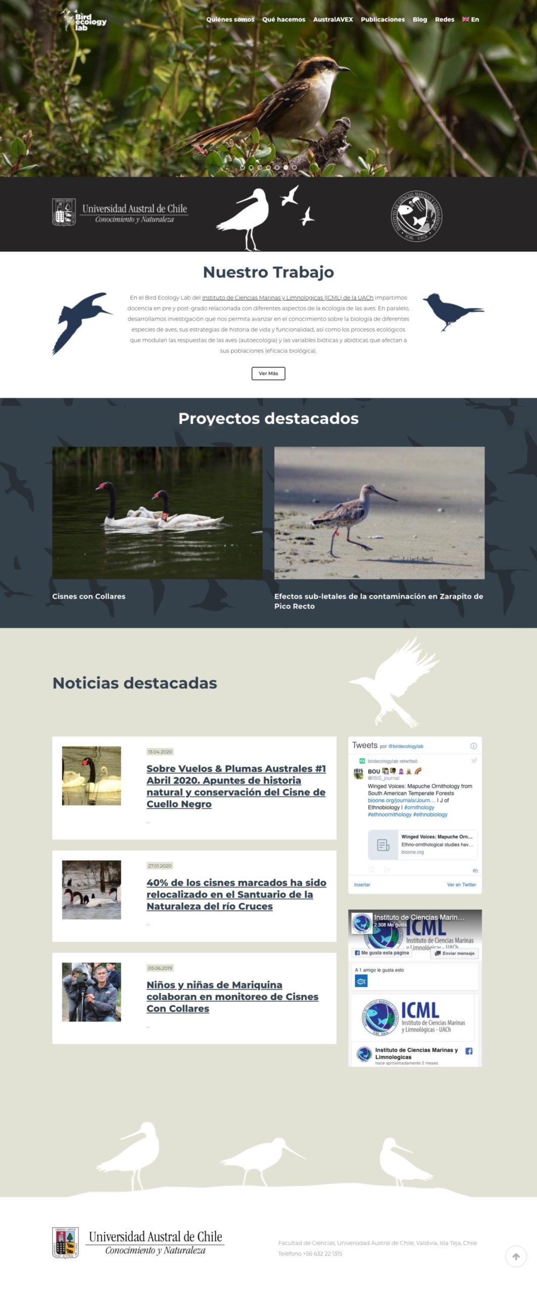 screencapture-birdecologylab-cl-2020-04-30-18_04_50